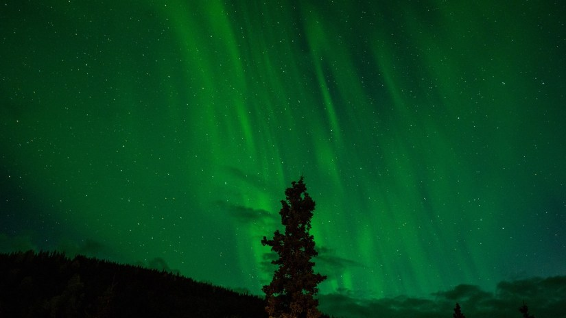 Must see Northern lights in Abisko