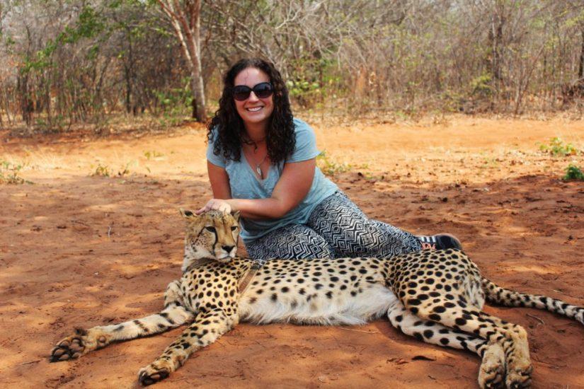 Hanging out with cheetahs - a great thing to do in Zambia