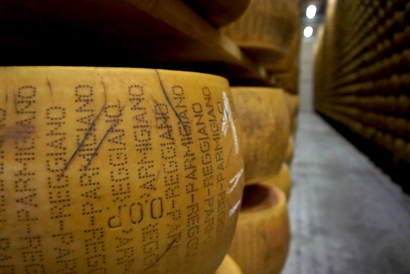 close up on a wheel of cheese