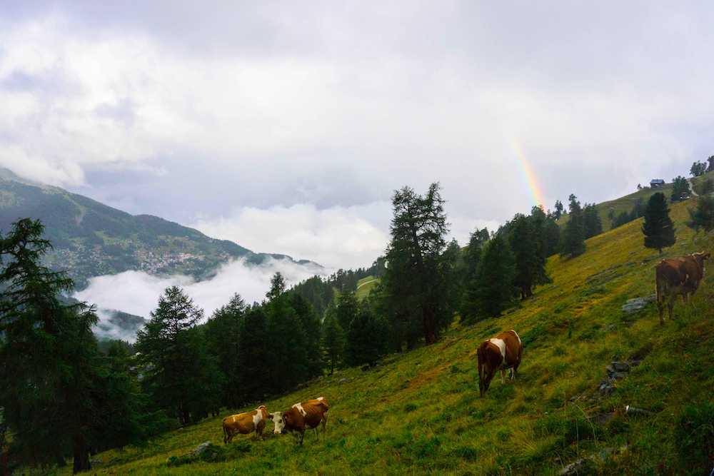A beautiful rainbow in Nendaz, Valais, Switzerland