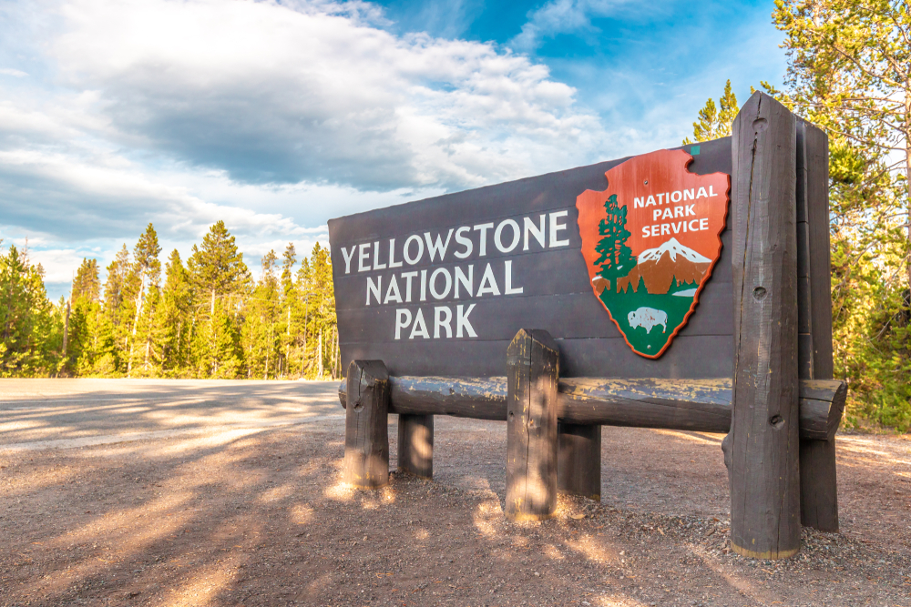"""Sign that reads """"Yellowstone National Park National Park Service"""", made of wood, surrounded by trees."""