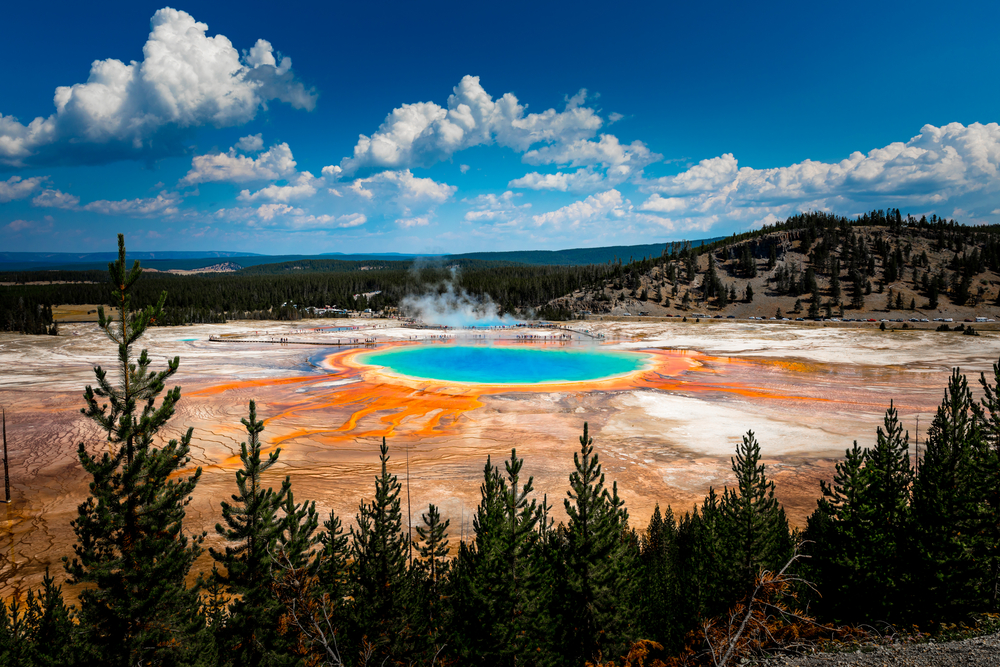 View of Grand Prismatic Spring and its orange and blue colors from afar, with a treeline in front of the view.