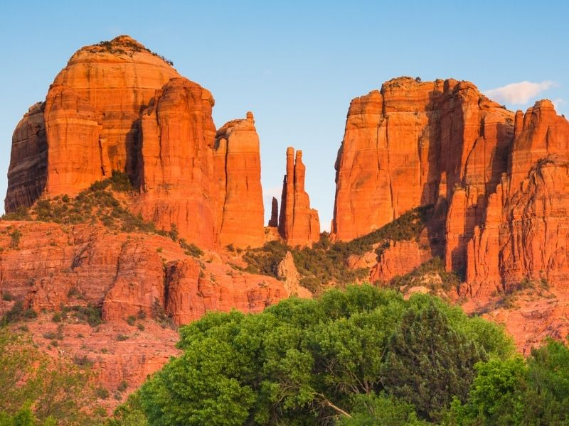The red rock formations of Sedona with the afternoon light on the rocks, a green tree in the foreground to add contrast.