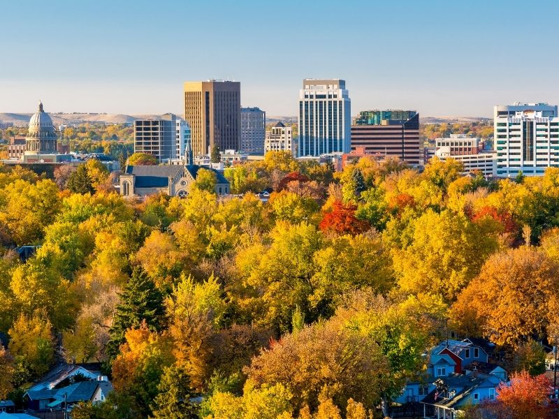 Yellow trees with a few red trees showing fall foliage, in front of the downtown Boise skyline with buildings rising above the tree tops on a sunny fall day.