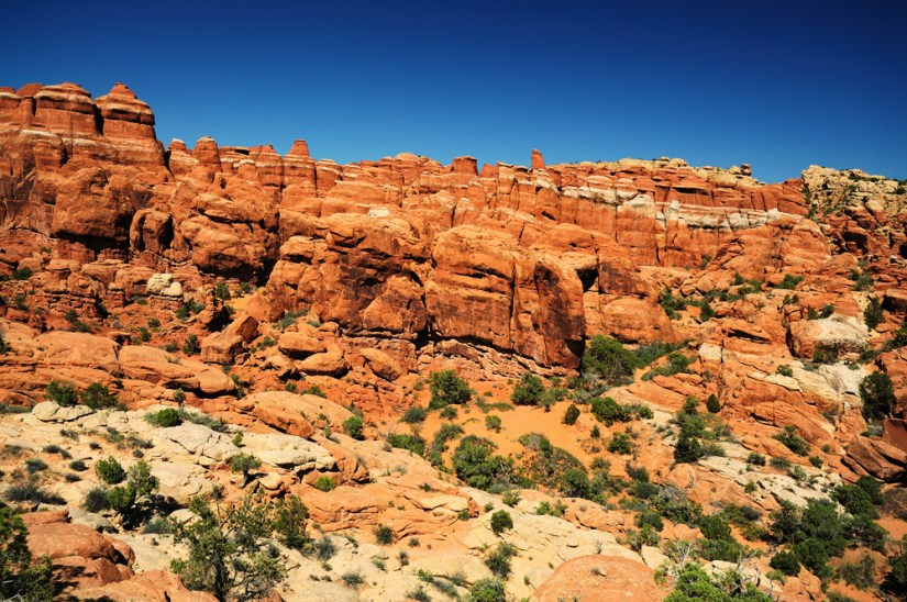 lots of beautiful red rocks at the fiery furnace viewpoint in arches