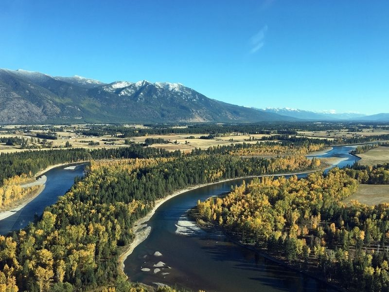 View of rivers winding amidst yellow and green trees in early autumn in Kalispell, MT, a popular place to end a Montana road trip itinerary.