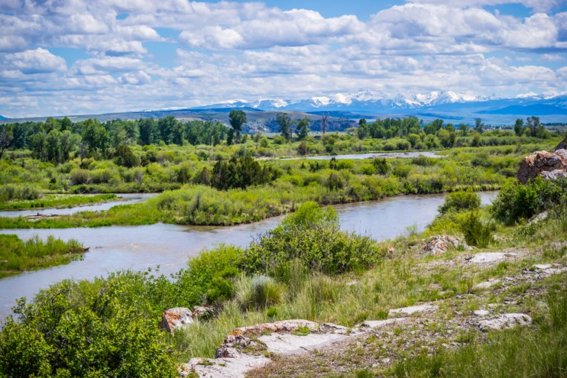 A grassy creek or river landscape with mountains in the distance.
