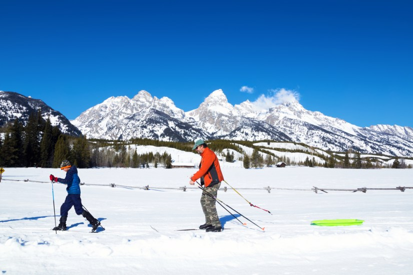 A father and son enjoying cross-country skiing on a winter day in Grand Teton National Park with blue skies and snow.