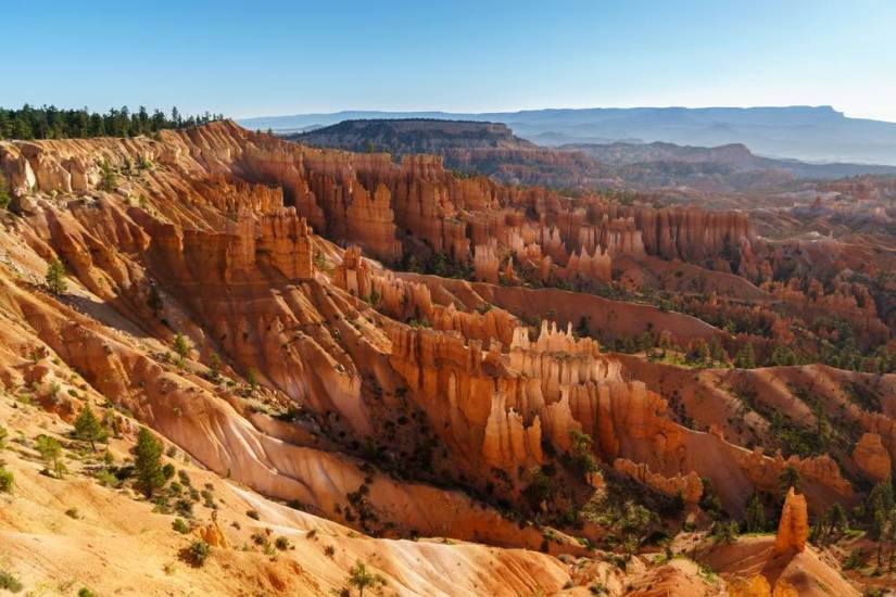 A brilliant view over the hoodoos in Bryce Canyon. Hoodoos are vertical finger-like rock formations formed by erosion over time.