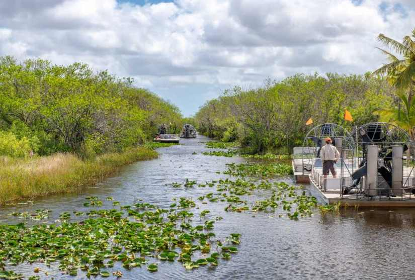 A man standing on an airboat in a swamp with lots of water lilies floating on the water in Everglades national park