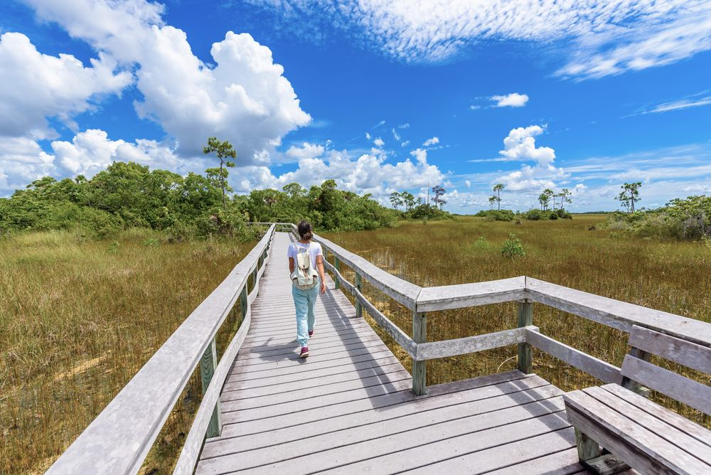 Woman in a white t-shirt, long light blue pants, and sneakers walking on the boardwalk of Hammock Trail in Everglades National Park