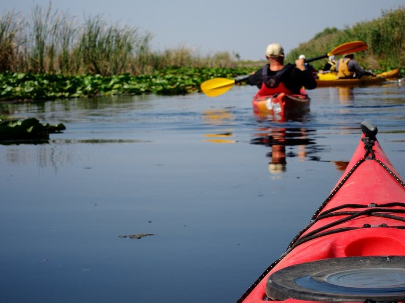 Nose of the red kayak against the background of a man rowing in a kayak and water lilies