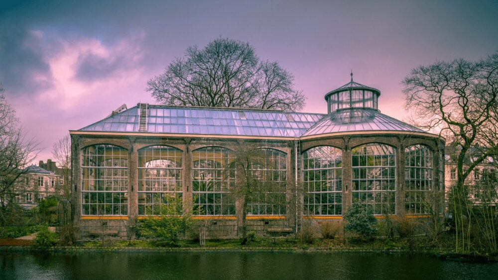 Sunset at the Hortus Botanicus, a clear glass greenhouse surrounded by trees.