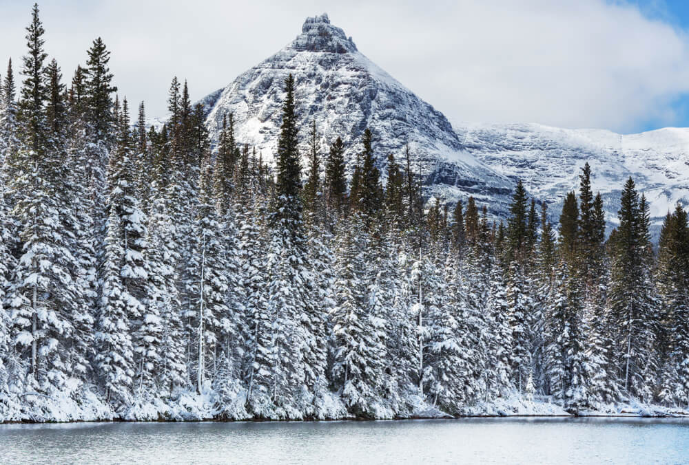 Snow-covered evergreen trees next to a lake, in front of a pyramid-shaped mountain covered in light snow.