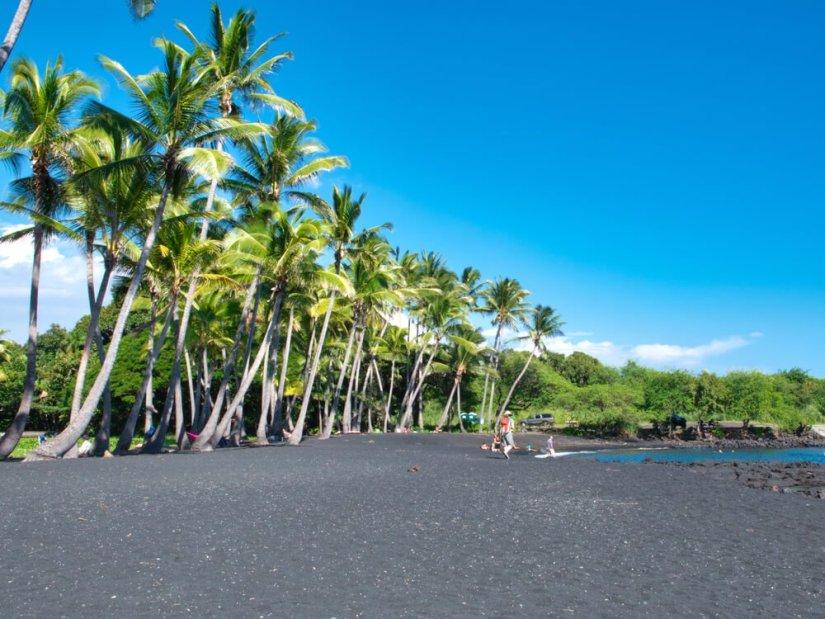palm trees against black sand on a beach in hawaii big island near hilo