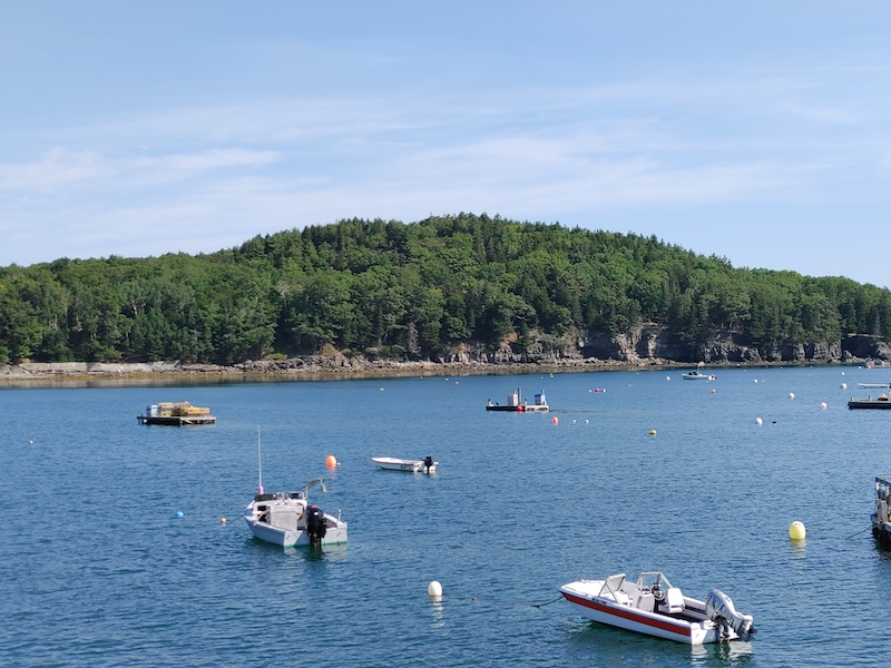 boats in the water of maine's bar harbor with an island in the distance