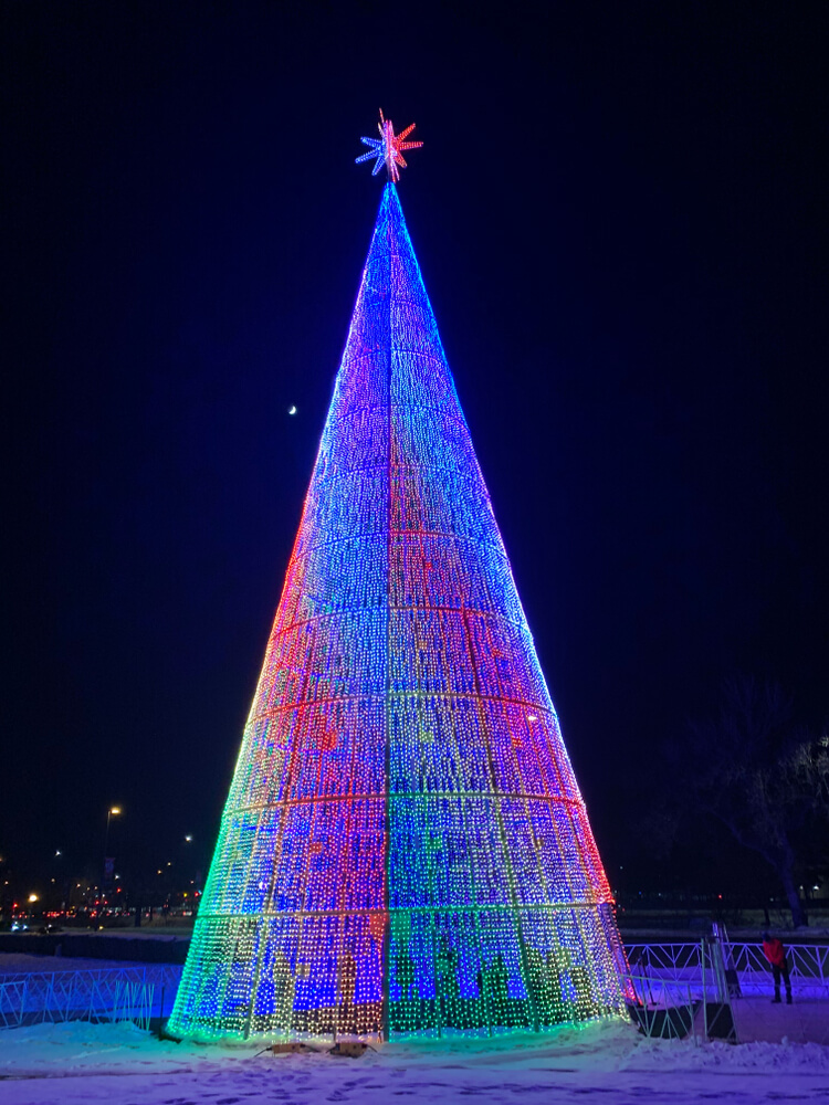 colorful rainbow mile high tree lit up at night, with snow on the ground