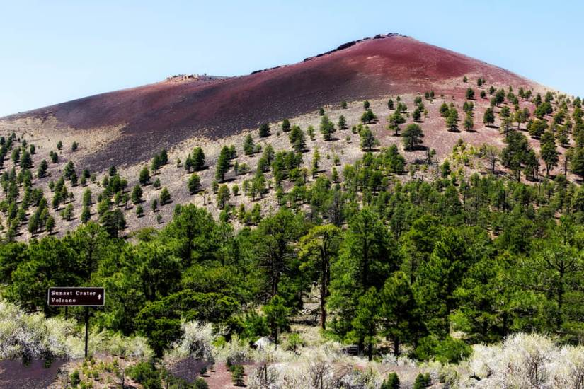 Colorful volcanic hill near sunset crater in Flagstaff Arizona with lots of trees