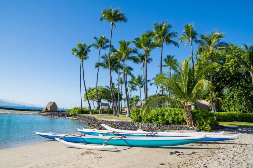a hawaiian canoe on the beach with palm trees