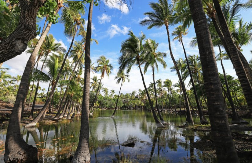 fish Pond in Kalahuipuaa Historical Park on the Big Island of Hawaii