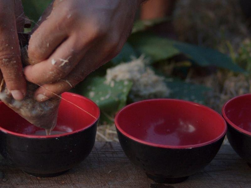 brewing kava tea in bowls
