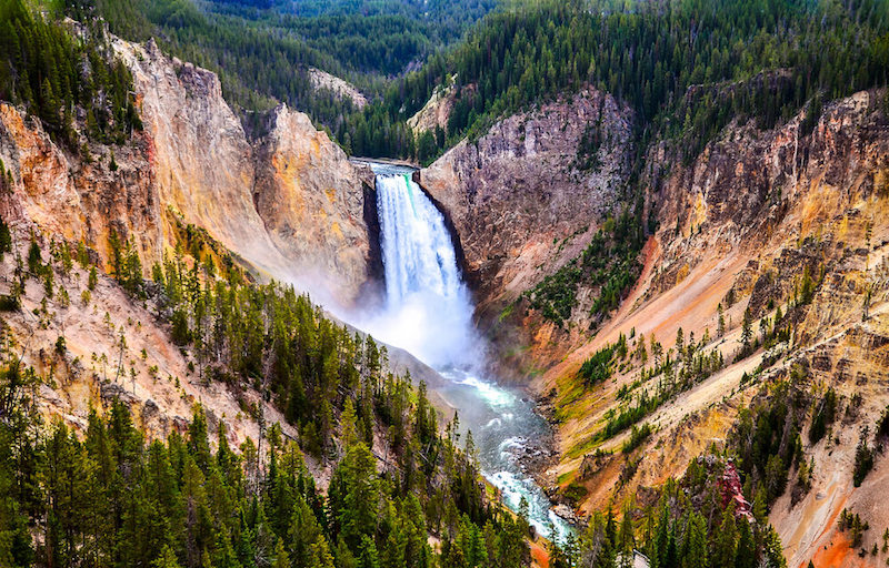 Photo of the waterfall at Grand Canyon of the Yellowstone (Lower Falls) surrounded by canyon and trees
