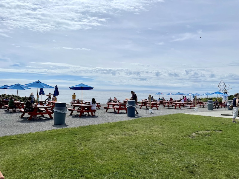 picnic tables overlooking the ocean with some green lawn
