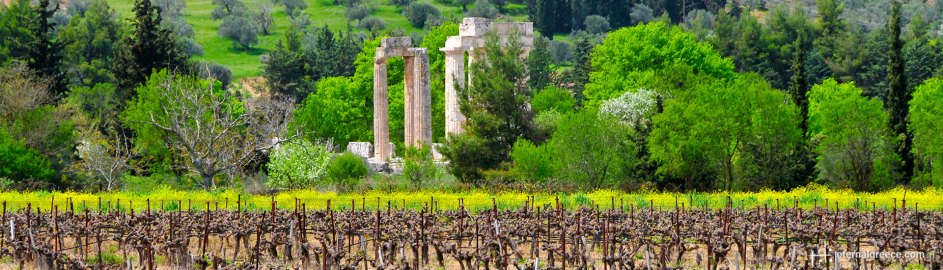 Temple of Zeus, Nemea, Eternal Greece Ltd