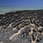 A Terra se oxigenou 270 milhões de anos antes do que se pensava?