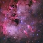 Os 'girinos' cósmicos na nebulosa IC 410 por Steven Coates