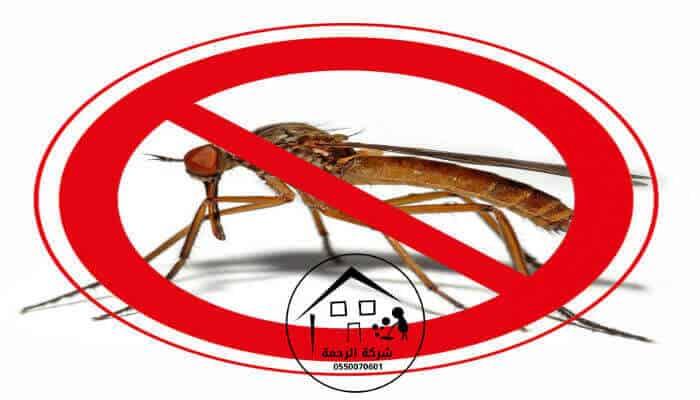 صورة لحشرة ميته