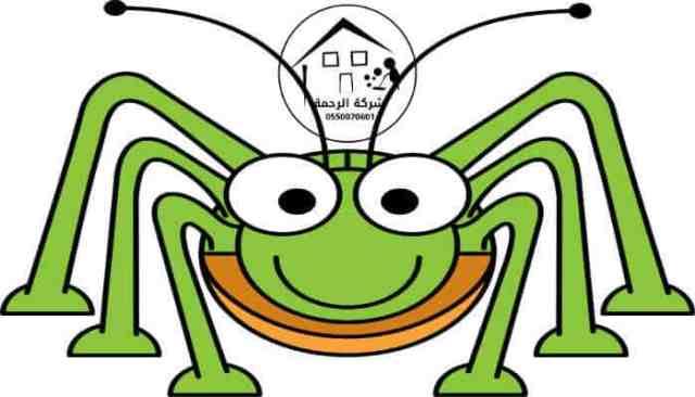 صرة حشرة كرتونية