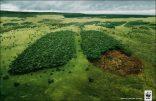 nuestro-planeta-pierde-oxigeno-y-los-cientificos-no-conocen-las-causas-grandes-medios-696x454