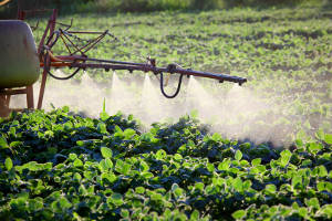 Soybean demand set to rise