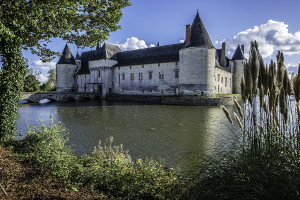 VanEck: A wide moat is only half the battle