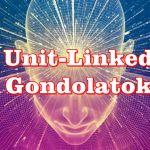Unit-Linked Gondolatok