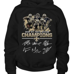 2018 nfc south division champions hoodie