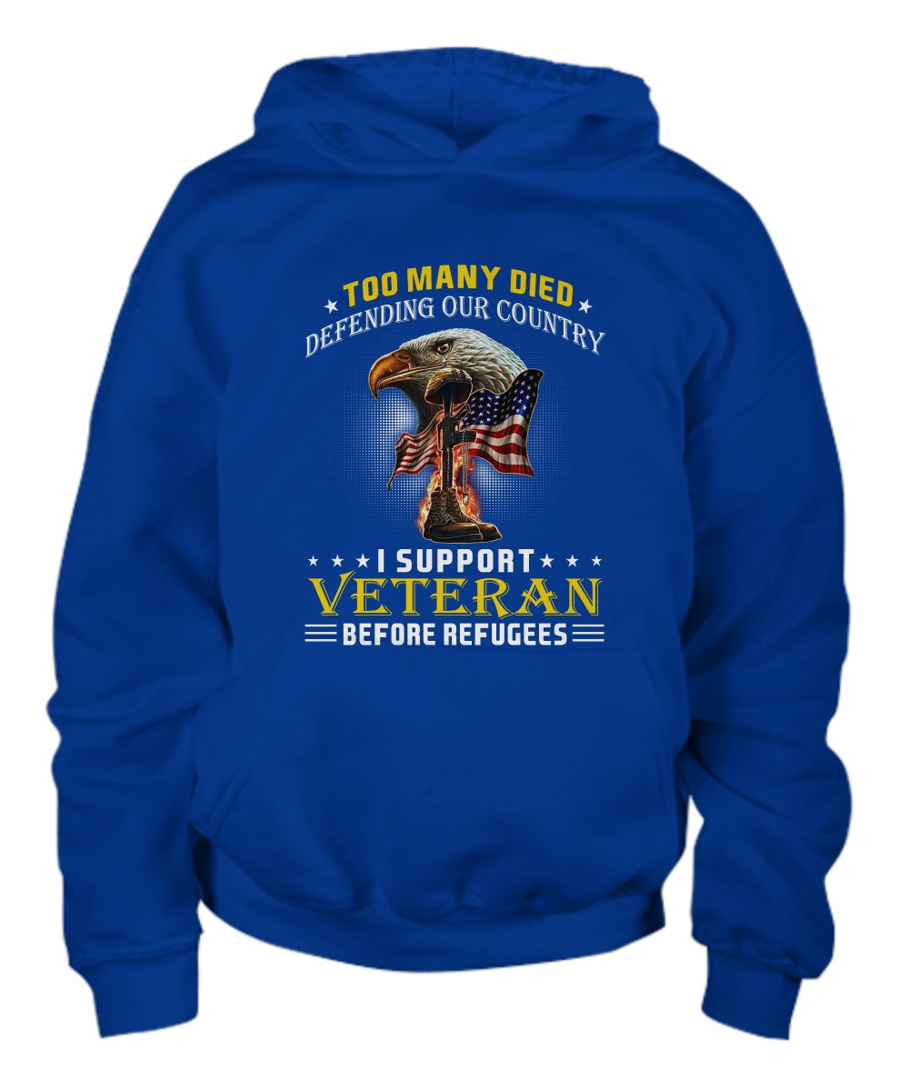 Too many died defending our country I support Veteran hoodie