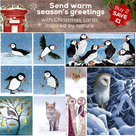 Save On Christmas Cards At RSPB Ethical Revolution