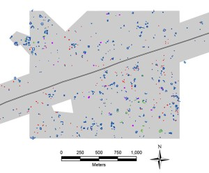 """Figure caption: Map of a portion of the area surveyed by UCRIP, in Yucatan, Mexico. The grey polygon represents the area that was surveyed. The colored items represent ancient features documented. The white """"hole"""" at lower left is the area that we left un-surveyed."""