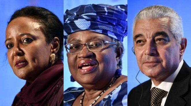 Egypt Misses out on World Trade Organization Leader Bid – Ethiopian Monitor