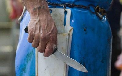 Βιασμός και σφαγή : Εμπειρικές Συσχετίσεις