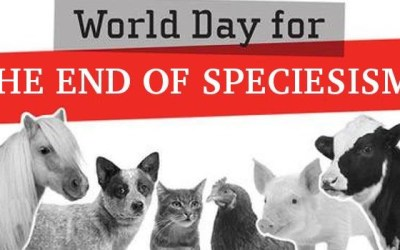 25/8 World Day for the End of Speciesism