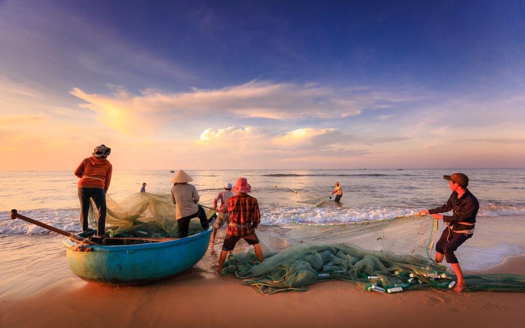 Σταματήστε να τρώτε ψάρι. Είναι ο μόνος τρόπος για να σώσουμε την ζωή στις θάλασσες μας – του George Monbiot