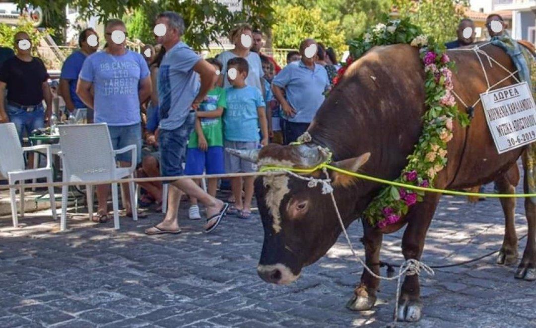 Οι ζωοθυσίες στην Λέσβο. Παράδοση χριστιανική;