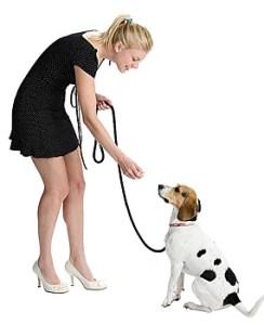 condicionamento-operante-caes-cachorros-comportamento-canino-psicologia-animal-helena-truksa