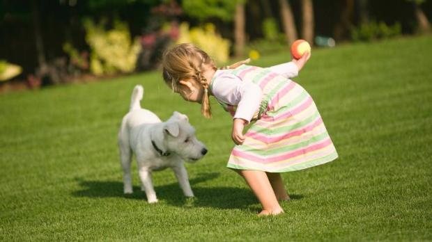 crianca brincando com cachorro ethos animal comportamento helena truksa