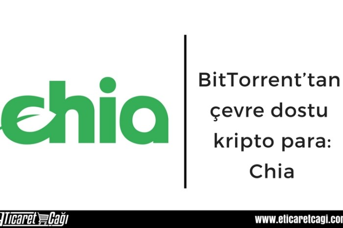 BitTorrent'tan çevre dostu kripto para: Chia