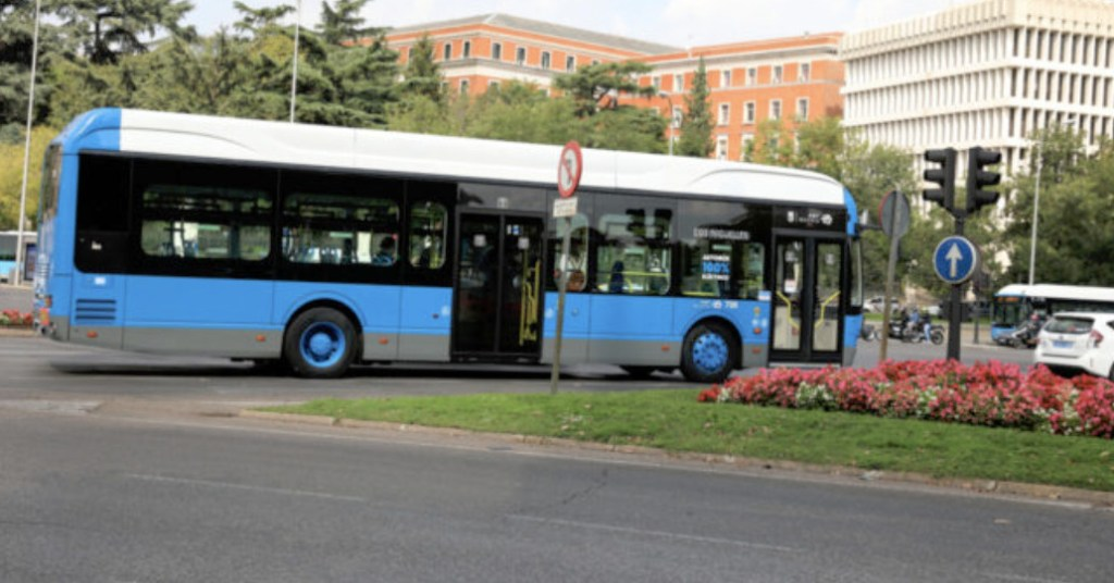 autobuses en línea