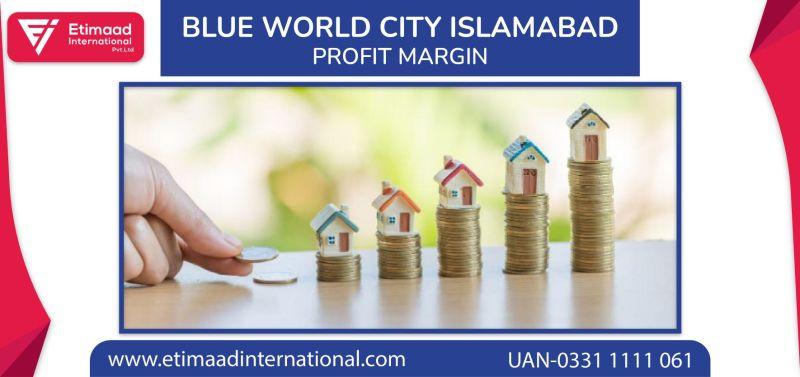 Blue World City Profit Margin